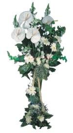 Karaman çiçek gönderme sitemiz güvenlidir  antoryumlarin büyüsü özel