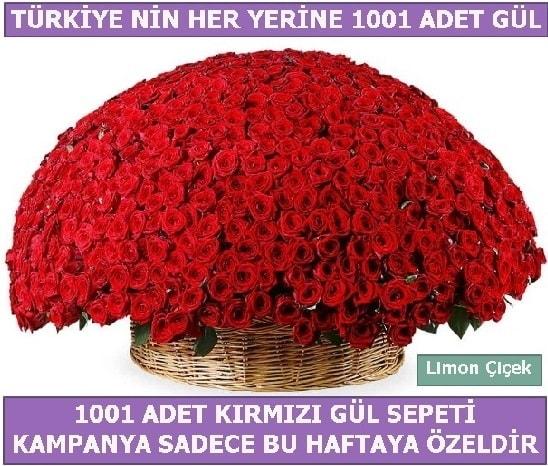 1001 Adet kırmızı gül Bu haftaya özel  Karaman ucuz çiçek gönder
