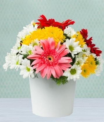 Seramik Vazoda Gelbera ve Papatya  Karaman çiçek siparişi sitesi