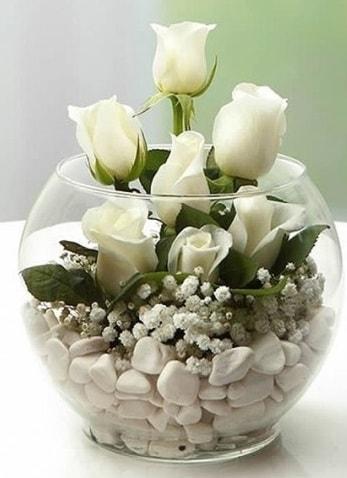Beyaz Mutluluk 9 beyaz gül fanusta  Karaman cicekciler , cicek siparisi