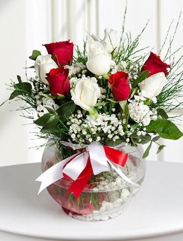 Aşk Küresi  5 beyaz 5 kırmızı gül fanusta  Karaman uluslararası çiçek gönderme