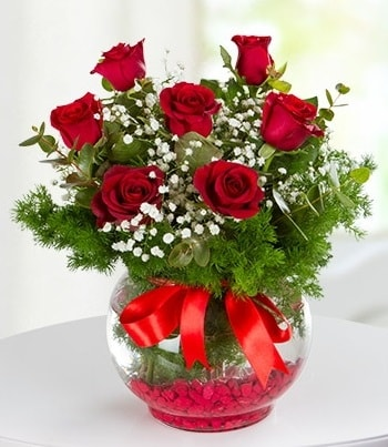 fanus Vazoda 7 Gül  Karaman internetten çiçek siparişi