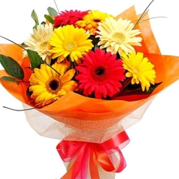 9 adet karışık gerbera buketi  Karaman internetten çiçek siparişi