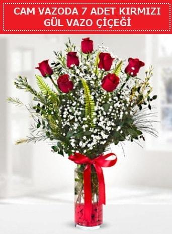 Cam vazoda 7 adet kırmızı gül çiçeği  Karaman hediye çiçek yolla