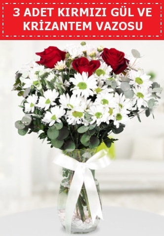 3 kırmızı gül ve camda krizantem çiçekleri  Karaman çiçek siparişi sitesi