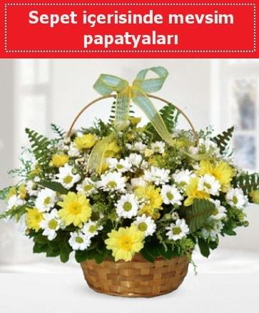 Sepet içerisinde mevsim papatyaları  Karaman çiçek siparişi vermek